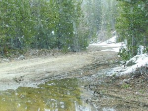 late April flurries at Ginty Creek