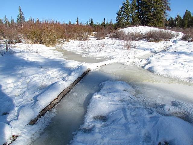 boardwalk at Ginty Creek