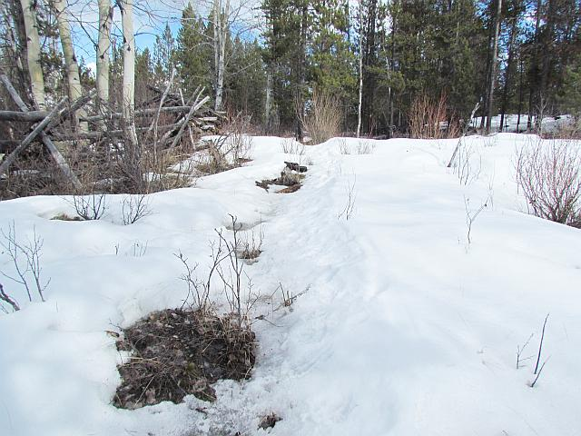 trail thawing at Ginty Creek