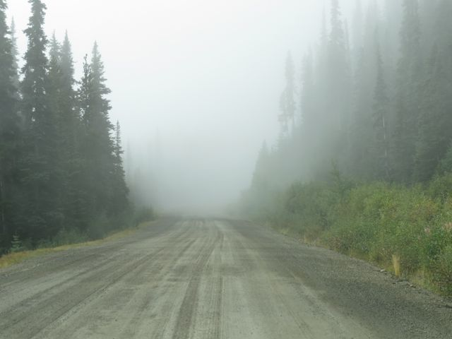 fog on the Bella Coola Hill