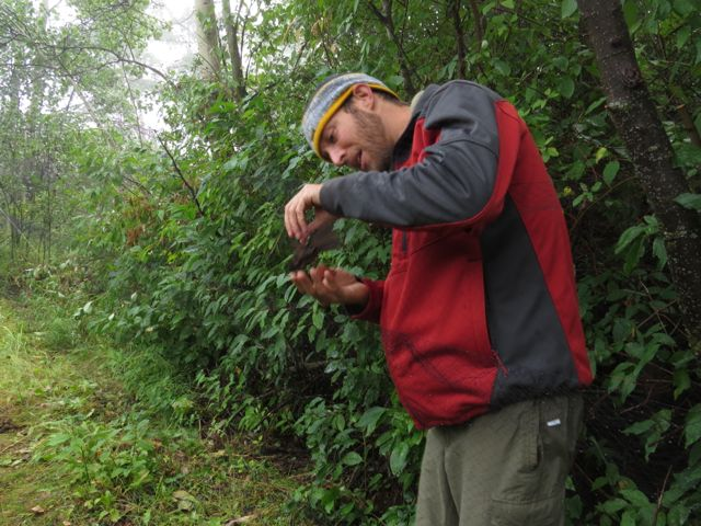 Chris with song sparrow